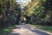 Nebenstrecke bei Amesbury UK